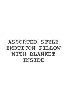 Assorted Style Emoticon Pillow With Blanket Inside