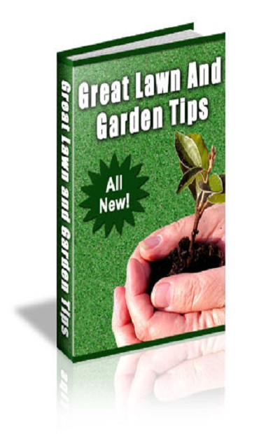 Great Lawn and Garden tips